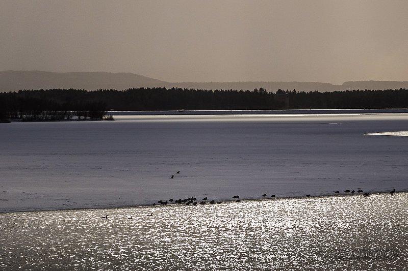 Großer Rothsee im Winter