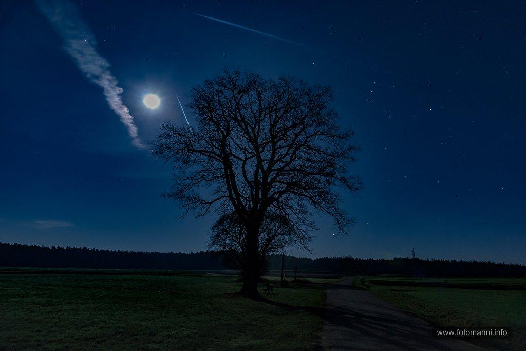 Mondnacht.jpg